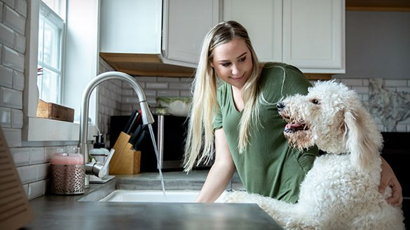 Woman washing in kitchen with dog