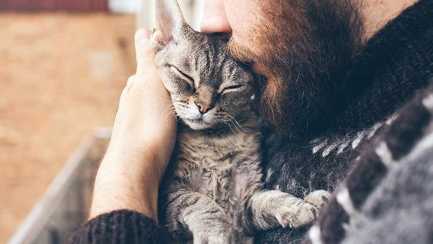 owner embracing cat